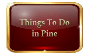 Things To Do in Pine