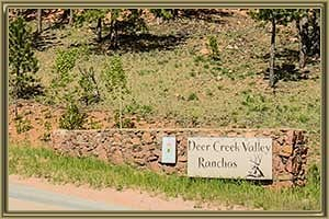 Homes For Sale in Deer Creek Valley Ranchos Bailey CO