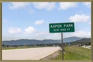 Homes For Sale in Aspen Park Conifer CO