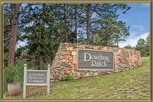 Homes For Sale in Douglas Ranch Pine CO