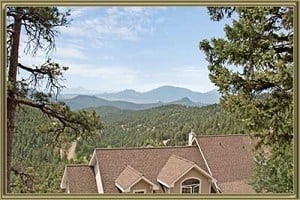 Homes For Sale in Richmond Hill Conifer CO