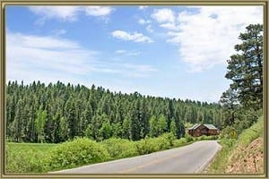 Homes For Sale in Shadow Mountain Conifer CO