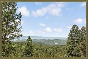 Homes For Sale in Wamblee Valley Conifer CO