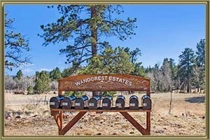 Homes For Sale in Wandcrest Pine CO