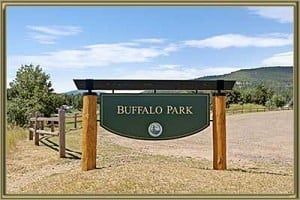 Homes For Sale in Buffalo Park Evergreen CO