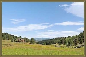 Homes For Sale in Cragmont Evergreen CO