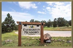 Homes For Sale in Evergreen Meadows Evergreen CO