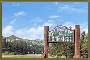 Homes For Sale in Homestead Morrison CO