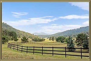 Homes For Sale in Kerr Gulch Evergreen CO
