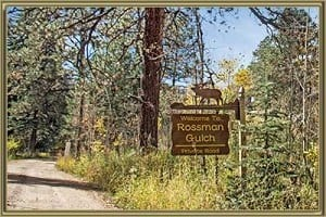 Homes For Sale in Rossman Gulch Morrison CO