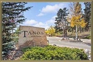 Homes For Sale in Tanoa Evergreen CO
