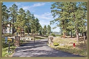 Homes For Sale in The Reserve at Tanoa Evergreen CO