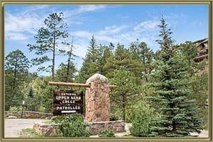 Homes For Sale in Upper Bear Creek Evergreen CO