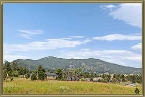 Homes For Sale in Wah Keeney Park Evergreen CO