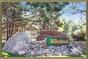 Homes For Sale in Willowbrook Morrison CO