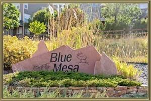 Homes For Sale in Blue Mesa Littleton 80125 CO