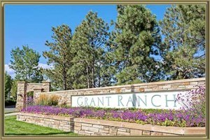 Homes For Sale in Grant Ranch Sub-Area Littleton 80123 CO