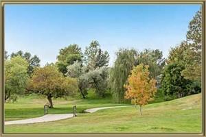 Homes For Sale in Arabian Estates Littleton 80127 CO