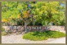 Homes For Sale in Columbine Knolls Estates Littleton 80128 CO
