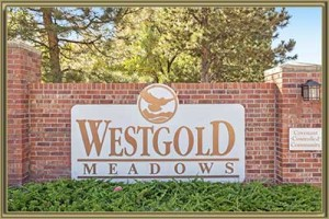 Homes For Sale in Westgold Meadows Littleton 80127 CO