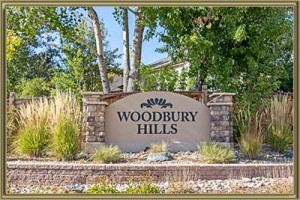 Homes For Sale in Woodbury Hills Littleton 80127 CO