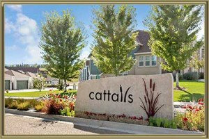Townhomes For Sale in Cattails in the Meadows Littleton 80128 CO