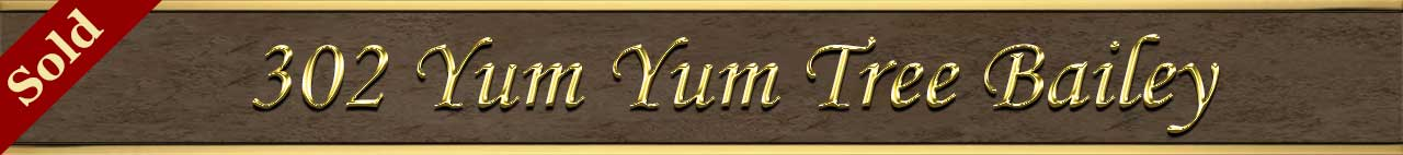Sold Status for 302 Yum Yum Tree Ln Bailey CO 80421
