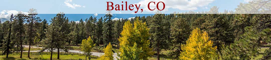 Homes For Sale in Friendship Ranch Bailey CO