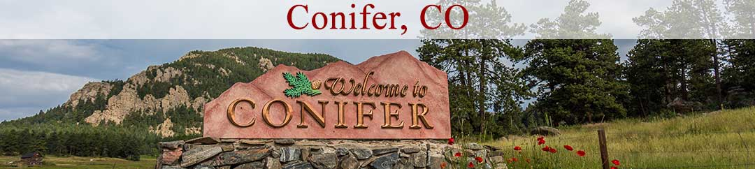 homes for sale in conifer co