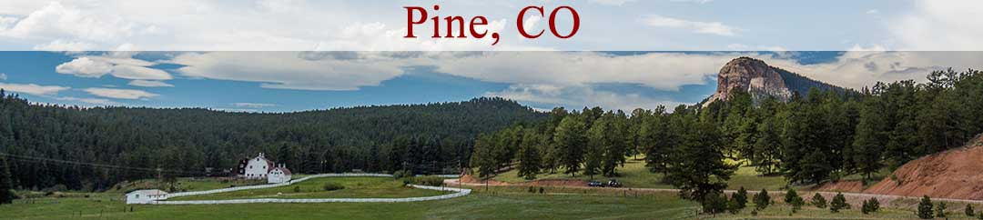 Homes For Sale in Pine Meadows
