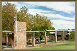 Rose Stein International Elementary School