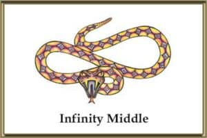 Infinity Middle School