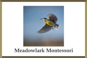 Meadowlark Montessori Elementary School