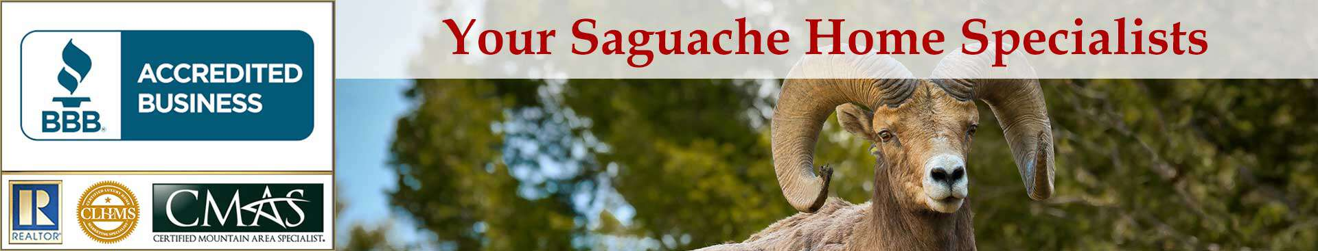 Saguache Accreditations Banner